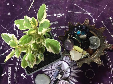 Ritual Na Mlad Mesec Za Ostvarenje želja, Manifestovanje 1.deo