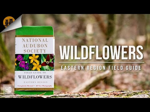Field Guides   Wildflowers - Eastern USA   National Audubon Society   Field Review