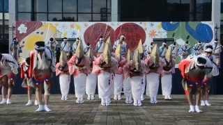 四国大学連(第55回芳藍祭)