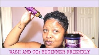 Wash & Go Tutorial | The Mane Choice | Beginner Friendly