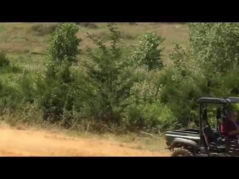 Utv vs Dirt bike