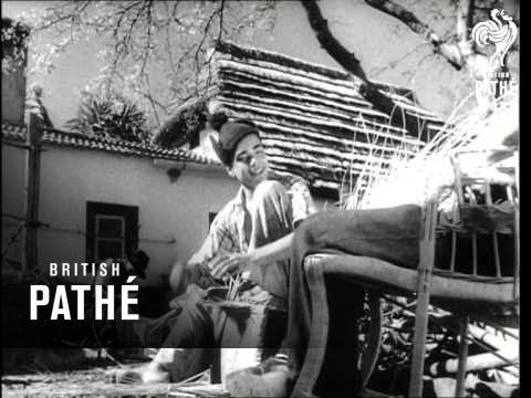 Madeira Basket Making (1952)