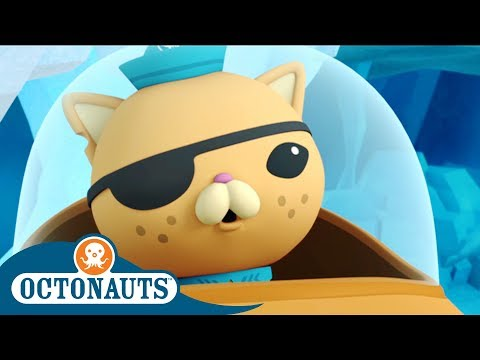 Octonauts - Keeping the Saltwater Crocodile Warm | Cartoons for Kids | Underwater Sea Education
