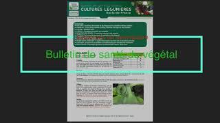 Episode 29 : Le Bulletin de Santé du Végétal