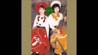 Syzygys - Lotus Rain