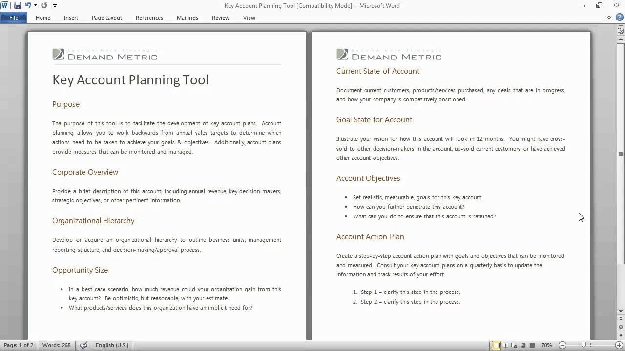 Key Account Planning Tool YouTube – Account Plan Templates