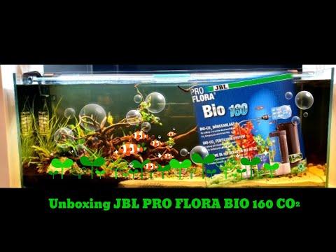 JBL PROFLORA BIO 160 CO2