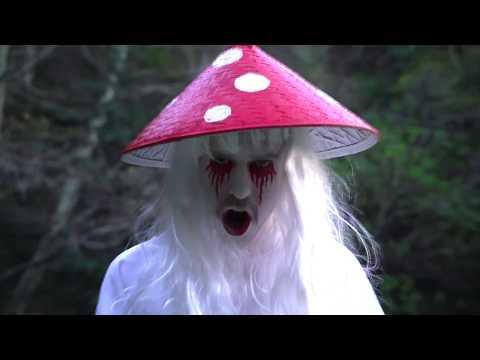 Glitter Wizard - Mycelia