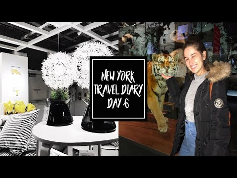 NYC VLOG #6 | IKEA, MUSEUM OF NATURAL HISTORY & VICTORIA'S SECRET  ♡