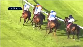 Vidéo de la course PMU QATAR PRIX DANIEL WILDENSTEIN