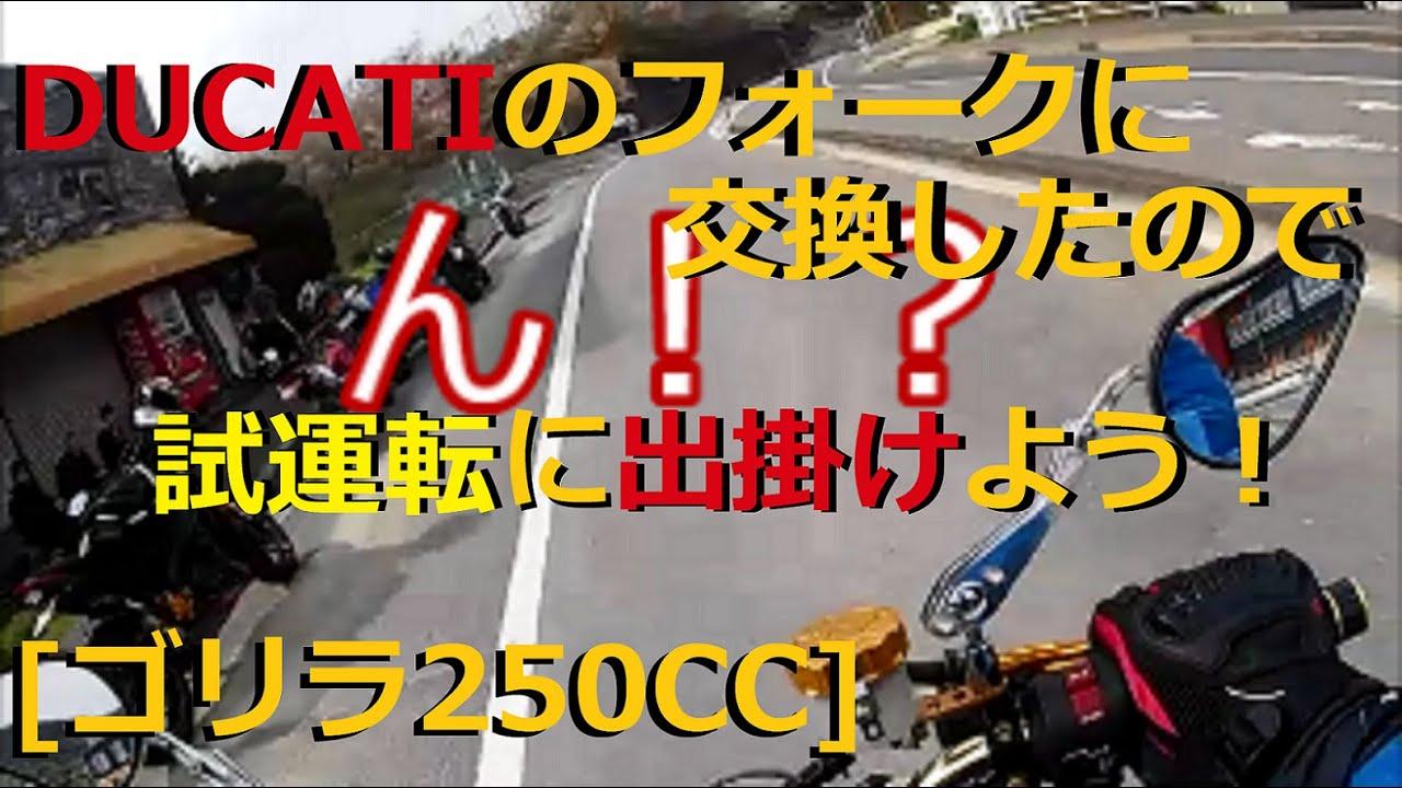 [ゴリラ250cc] 無理やりDUCAT計画が完了したので試運転に出掛けた結果...........