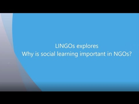 Explore social learning with LINGOs