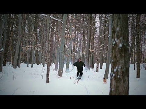 Telemark Skiing Backcountry XCD B/C Gatineau Park Kingsmere Chelsea Quebec HD