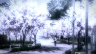 Sonata Arctica - Under your Tree (Clannad AMV)