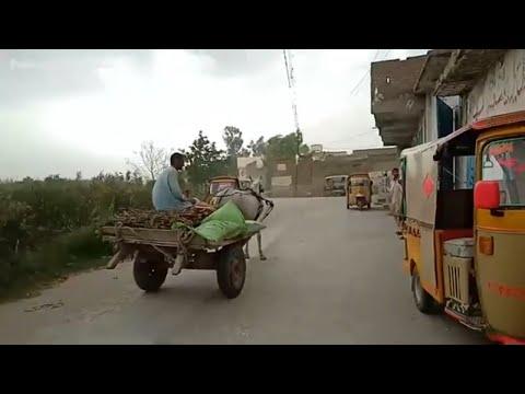 Weather Updates Swabi Ka Musam Khyber Pakhtunkhwa Pakistan
