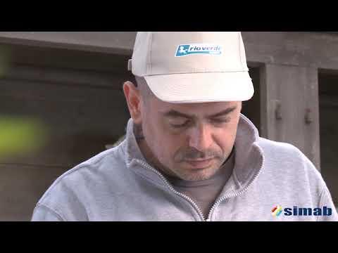 NUAGES DE VENUS - Effet peinture - YouTube