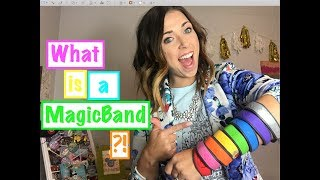What is a MagicBand?!