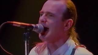 Status Quo-Perfect Remedy LIVE