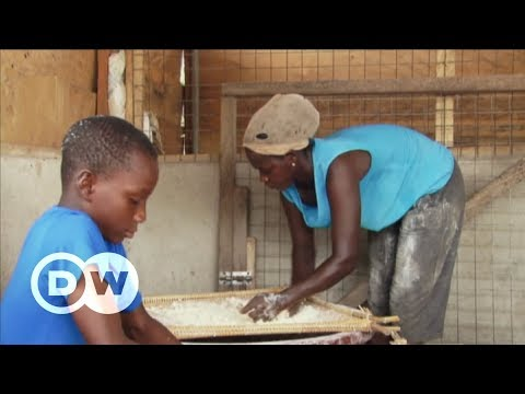 Ghana: Could more efficient cookstoves save the climate? | DW Deutsch