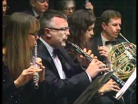шуман симфония №1 часть 2 Schumann Symphony №1 Part 2