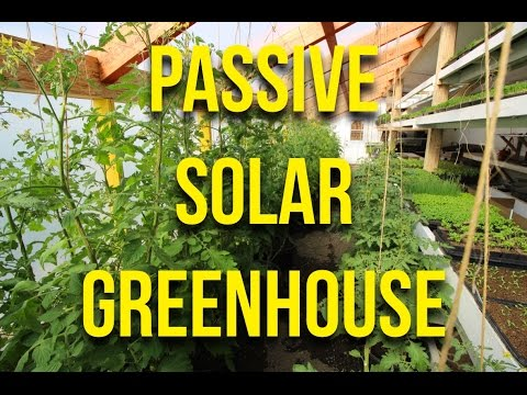 IN FOCUS: Passive Solar Greenhouse