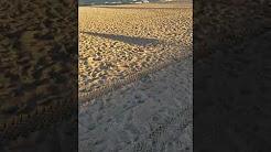 "Corpus Christi McGee beach ""Strange  shoreline"""