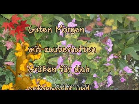 Guten Morgen Herbst Youtube