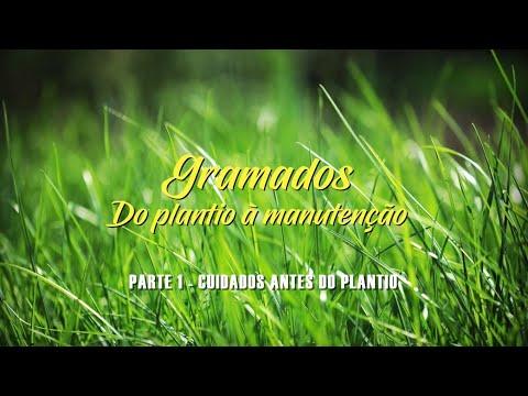GRAMADOS - PARTE 1 - CUIDADOS ANTES DO PLANTIO