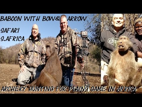2 Baboons with bow and arrow on African Safari bowhunting Africa with archery