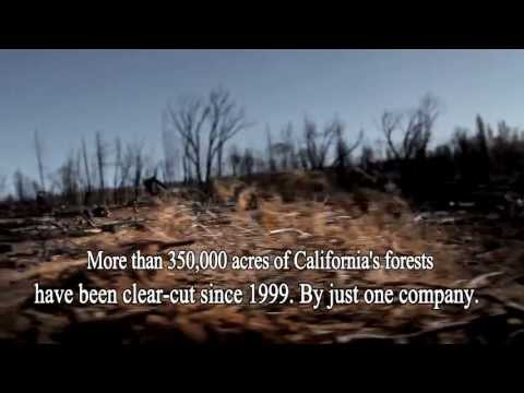 BATTLE CREEK ALLIANCE: 'CALIFORNIA FORESTS ARE DISAPPEARING'
