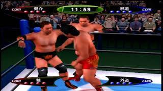 PS2のキングオブコロシアムⅡを使用しCOM VS COMでタッグ戦.
