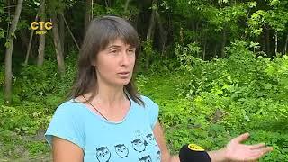 Прибрежная растительность   СТС-МИР.