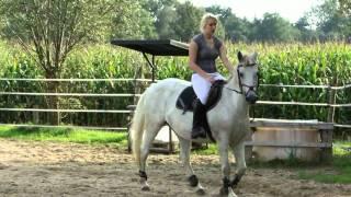 Paardrijden Hengelo, Ik Op Mistral
