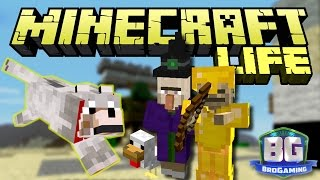 Puppies, Chickens, And Witches, OH MY - The Minecraft Life - Bro Gaming