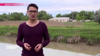 Как афрокиргизы оказались в Средней Азии