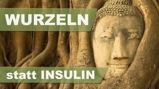WURZELN STATT INSULIN | Dr. med. Ingfried Hobert | ETHNOMED