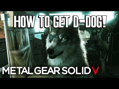 MGSV: HOW TO GET D-DOG AS A BUDDY!