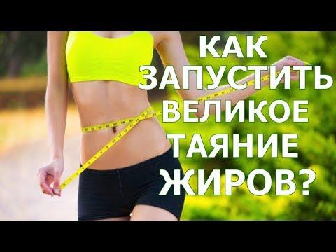 Как запустить великое таяние жиров? \ Елена Бахтина