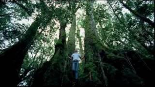 Música instrumental 11 Australia