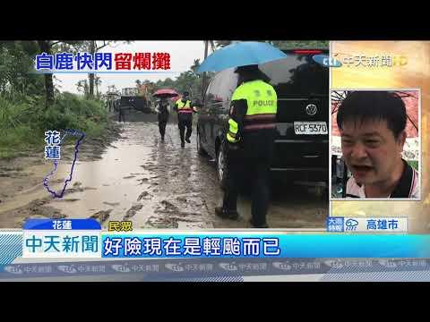 20190825中天新聞 白鹿風雨襲台東!綠色隧道老樹倒塌