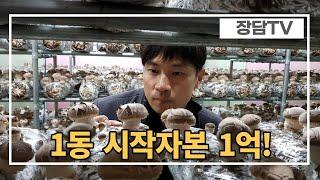 톱밥배지 백화고 버섯재배 시작 위한 비용공유! 버섯재배…