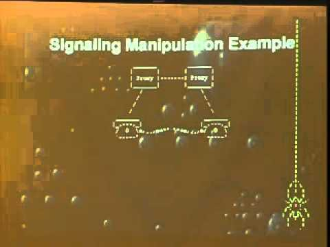 Toorcon 2007 - Druid - VOIP Attacks.mp4
