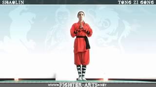 Anda Mau Belajar Beberapa Jurus Kungfu