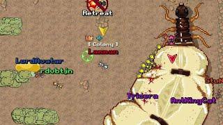 Colony defeats Termite King & Queen [Co-op Mode] Pocket Ants screenshot 5