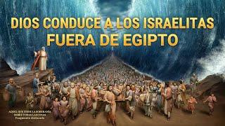 Documental en español latino | Dios conduce a los israelitas fuera de Egipto