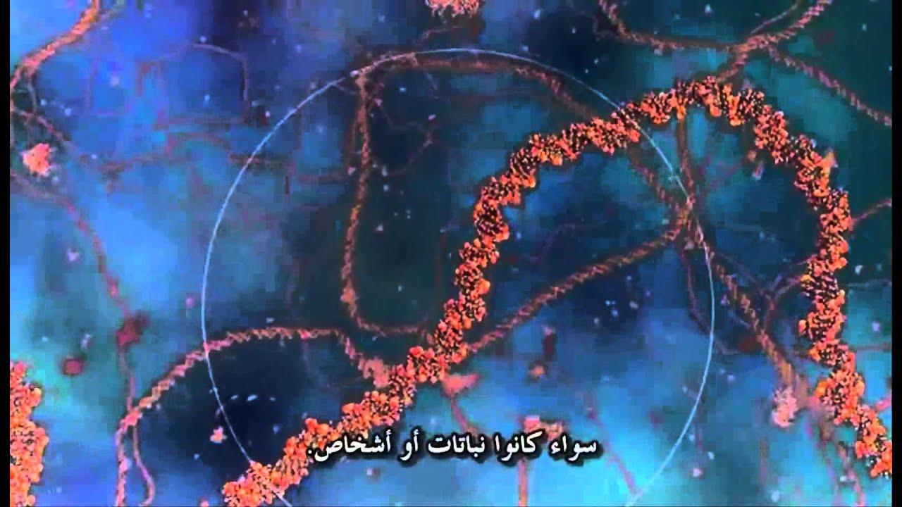 Cosmos voyage !