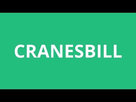 How To Pronounce Cranesbill - Pronunciation Academy