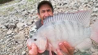 Pesca y cosina tilapia alas brasas pesca con chuy