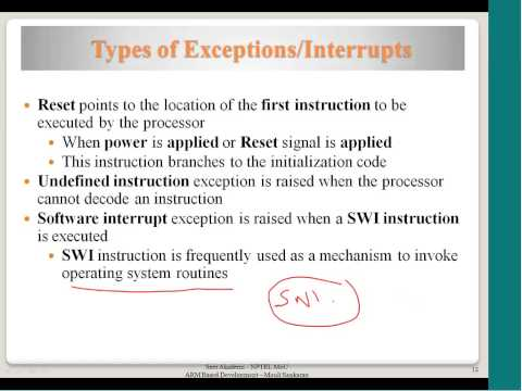 Interrupts and Exceptions, Exception Handlers, Reset Handling