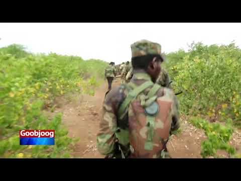 Al-Shabab ayaa weerar ku qaaday saldhig Ciidanka Dowladda iyo kuwa Jubbaland